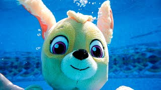 Paw Patrol Go Swimming on a Hot Day and Learn about Money and Responsibility!