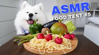 ASMR Dog Reviewing Different Types of Food #5 I MAYASMR