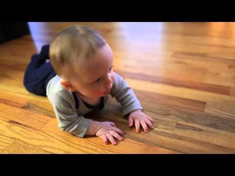 Baby Man Liam Crawling on Hardwood Floors - Clip 2