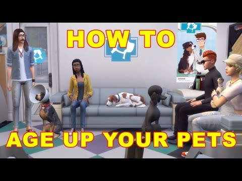 Sims 4 Cats & Dogs: How to Age Up Pets