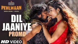 Song Promo: Dil Jaaniye   Pehlwaan - Hindi   Kichcha Sudeepa   Krishna   Arjun Janya