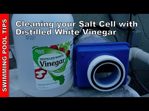 How to Clean your Pool Salt Cell with 5% Distilled White Vinegar