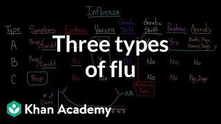 Three types of flu   Infectious diseases   Health & Medicine   Khan Academy