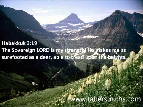 25 Bible Verses About Strength