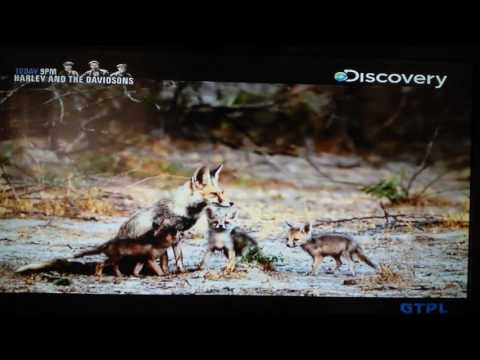 India My Way, Discovery Channel