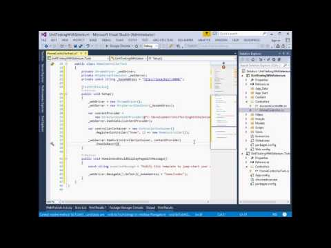 Whitebox Testing AspNet Mvc4 using Selenium