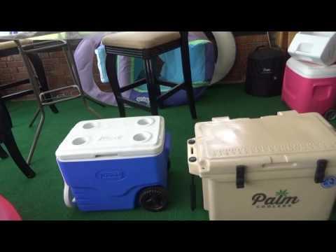Coleman cooler vs Palm Cooler