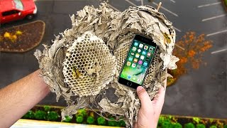 Can a Wasp Nest Protect an iPhone 7 from a 100 FT Drop Test? - Gizmoslip