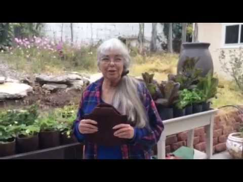 How Does The Gro-Matic Deck And Patio Planter Work? Lets Ask Julie!