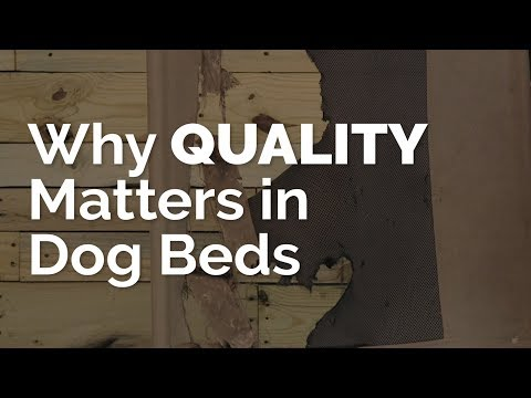 Why QUALITY Matters in Dog Beds!