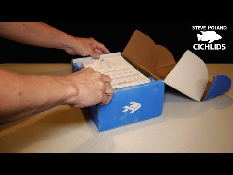 Unboxing the Cichlid Box from MyAquariumBox