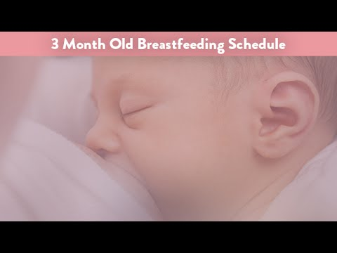 3 Month Old Breastfeeding Schedule | CloudMom