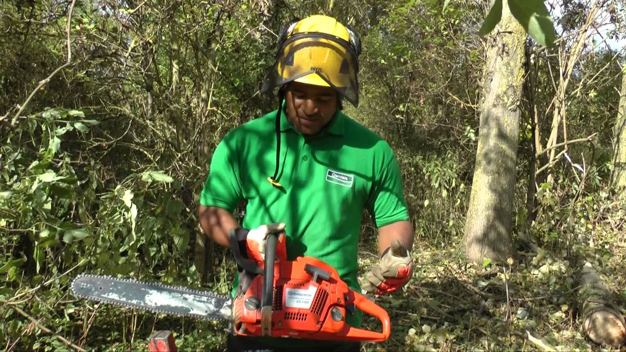 A Spotlight on Tree Surgery with Anthony Harper