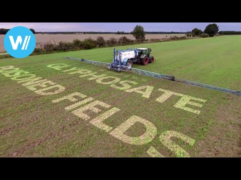Poisoned Fields - Glyphosate, the underrated risk? (HD 1080p)