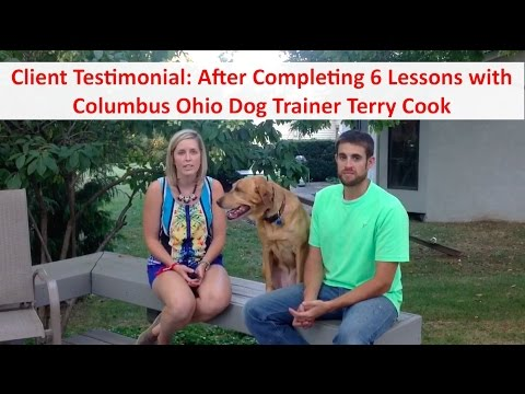 Columbus Ohio Dog Training by Terry Cook: Client Testimonial Review: After 6 Dog Training Lessons