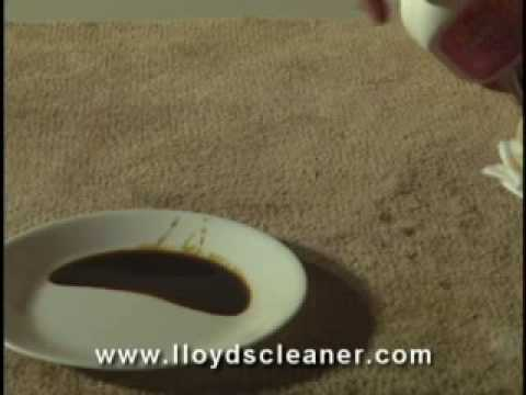 Carpet Stain Remover & Cleaner