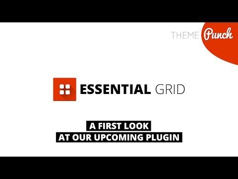 Essential Grid Teaser