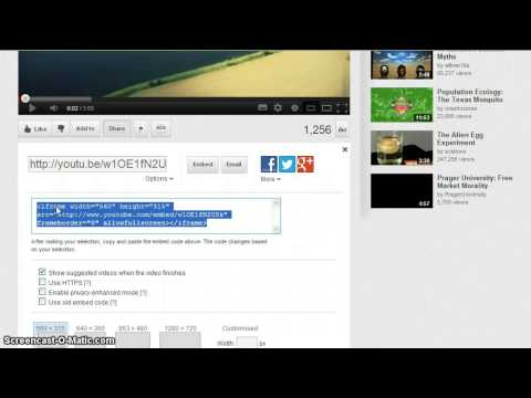 How to embed Youtube video into PowerPoint 2010