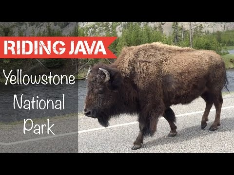 Camping in Yellowstone Nation Park