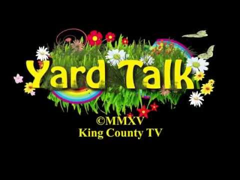 Yard Talk - Have a septic system?