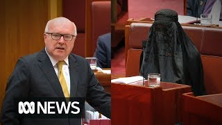 George Brandis slams Pauline Hanson for wearing a burka to Question Time in the Senate