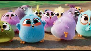 THE ANGRY BIRDS MOVIE 2 - Brilliant (Now Playing)