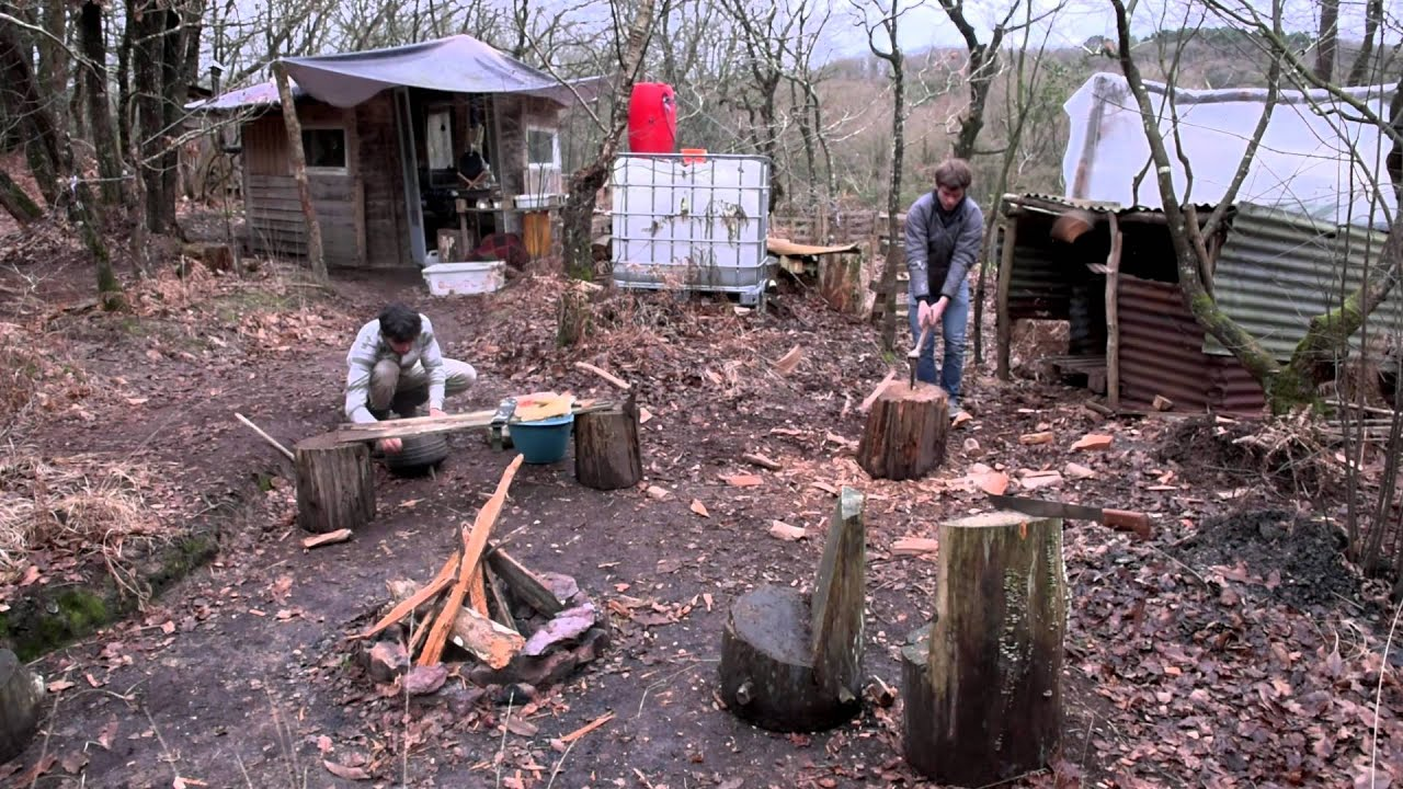 Les squatteurs des bois