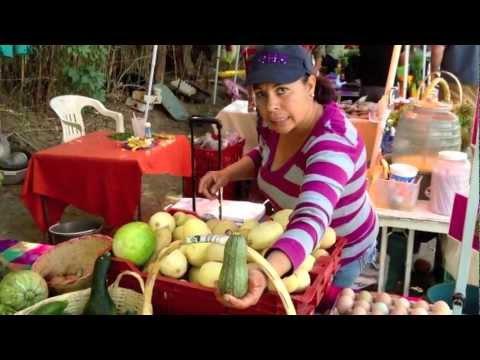 Mercado Orgánico de San José del Cabo