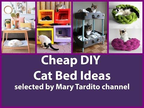 Cheap DIY Cat Bed Ideas