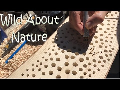 DIY Bee / Insect / Bug Hotel / Habitat Build - Off To The Netherlands! - 4K