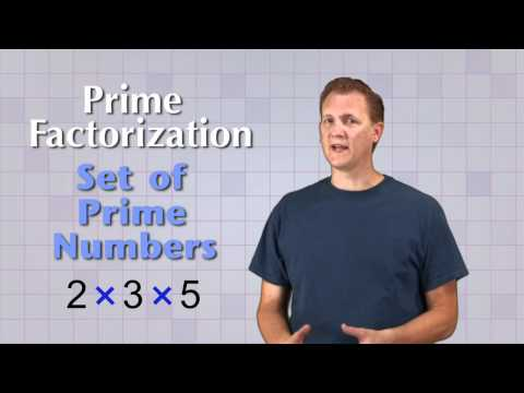 Math Antics - Prime Factorization