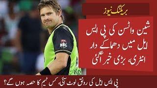 Shane Watson Back in PSL || David Malan to captain Lahore Qalandars ? || PSL 5 Updates