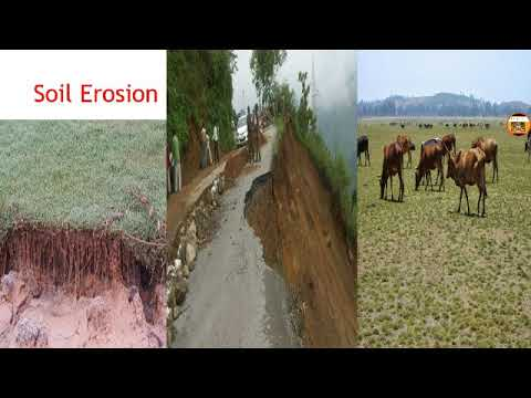 Soil erosion and it's types (in hindi)