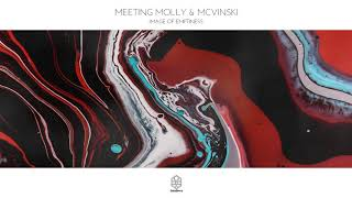 Meeting Molly & Mcvinski - Image of Emptiness
