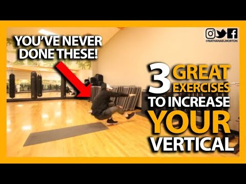 3 Exercises to Increase Your Vertical Jump! (YOU'VE NEVER DONE THESE BEFORE!)