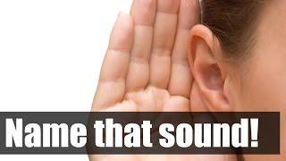 AFV - Name that sound 1