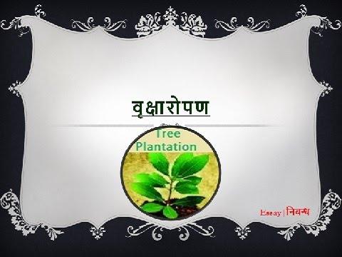 Hindi Essay on 'Tree Plantation' | 'वृक्षारोपण' पर निबंध