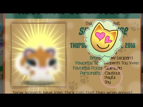 I Just Adopted the CUTEST Pet Ever!! |Animal Jam Play Wild