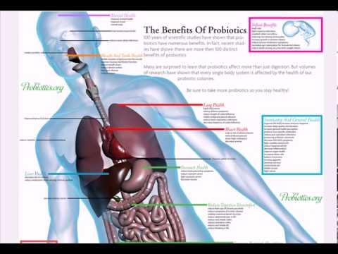 Top Health Benefits of Probiotics