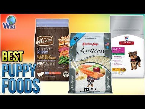 10 Best Puppy Foods 2018