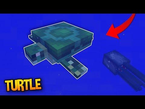 TURTLES in Mincraft?! - 1.4 Aquatic Update Concept Addon (Aquatic Update)