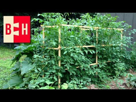 DIY Wood Tomato Cages