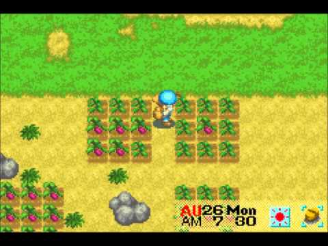 Let's Play Harvest Moon: Friends of Mineral Town 50: Even More Fall