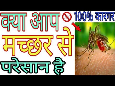 मच्छर काटना तो दूर आपके पास भी नहीं  आ पाएंगे | mosquito control with home remedies ( मच्छर भगाये)