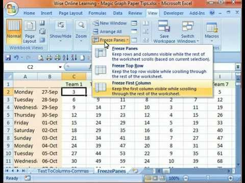 Keep Rows & Columns in View (Freeze Panes) in Excel 2007 - by WiseOnlineLearning.com