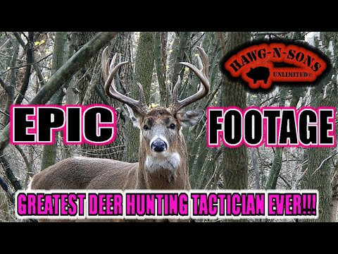 Greatest Whitetail Deer Hunting Tactician Of ALL Time - Herd Of Whitetail Bucks In My Yard