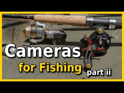 Best Cameras for Fishing Videos on a Budget