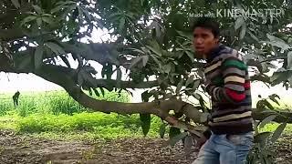 O Sathi Aaja Yaar Tera Pyar To Hai Meri Zindagi Sonu Kumar