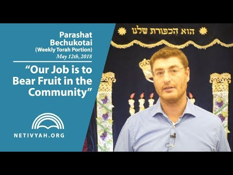 Parashat Bechukotai: Our Job is to Bear Fruit in the Community