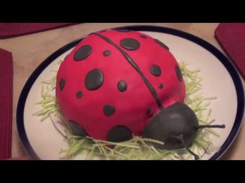 Lady Bug Cake (1st Fondant Cake)